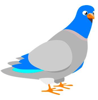 google paloma, google pigeon