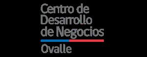centro de desarrollo negocios ovalle